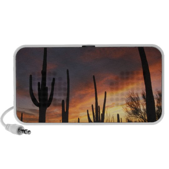 saguaro cacti, Carnegiea gigantea, after Mini Speaker