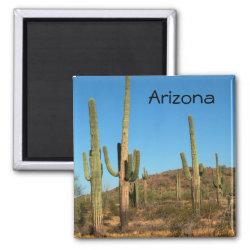 Saguaro cactus 2 inch square magnet
