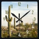 "Saguaro Cactus, Arizona,USA Square Wall Clock<br><div class=""desc"">Flora and fauna of the desert at Usery Mountain</div>"