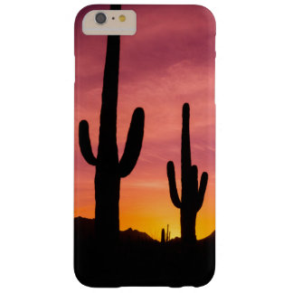 Saguaro cactus at sunrise, Arizona Barely There iPhone 6 Plus Case