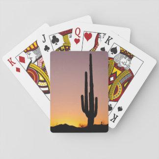 Saguaro Cactus at Sunset Playing Cards