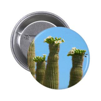 Saguaro Cactus Blossoms Pinback Button