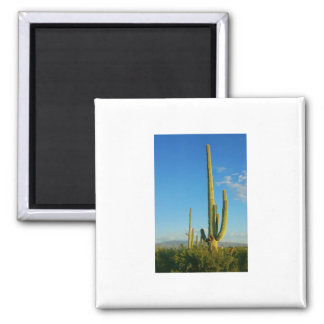 Saguaro Cactus Fridge Magnet