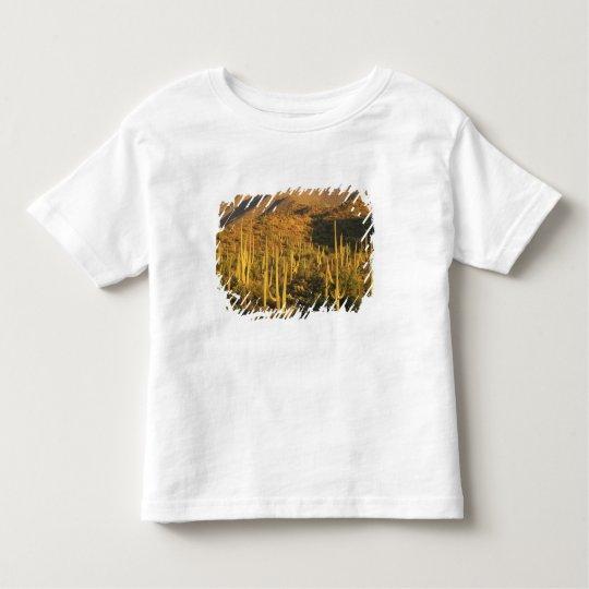 Saguaro cactus in Saguaro National Park near Toddler T-shirt