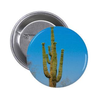 Saguaro Cactus Pin