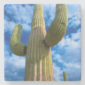 Saguaro cactus portrait, Arizona Stone Coaster
