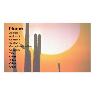 Saguaro cactus, Sonoran Desert, U.S.A. Desert Double-Sided Standard Business Cards (Pack Of 100)