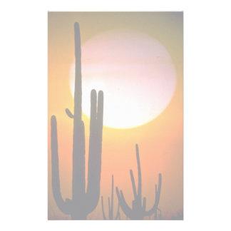 Saguaro cactus, Sonoran Desert, U.S.A. Desert Stationery