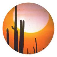 Saguaro cactus, Sonoran Desert, U.S.A. Desert Round Stickers