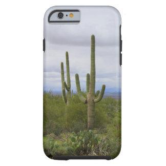 Saguaro Cactus Tough iPhone 6 Case