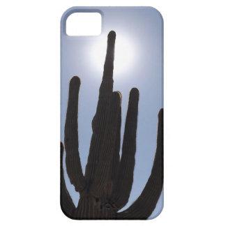 saguaro cactus with sun backdrop iPhone SE/5/5s case