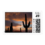 Saguaro Desert Cactus Postage Stamps