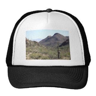 Saguaro Desert Pass Trucker Hat