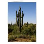 Saguaro en la tarjeta de felicitación del desierto