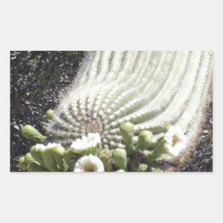Saguaro floreciente pegatina rectangular