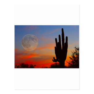 Saguaro Full Moon Sunset Post Card