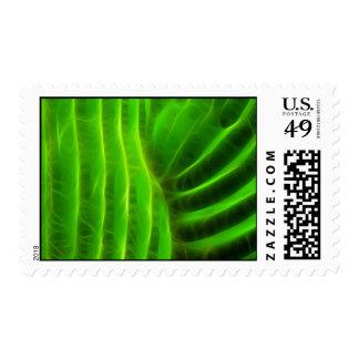Saguaro Glow Postage Stamp