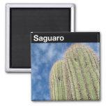 Saguaro National Park Fridge Magnets