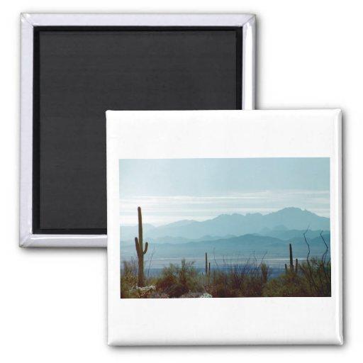 Saguaro National Park Magnets