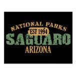 Saguaro National Park Post Card