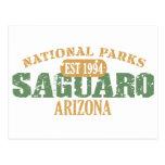 Saguaro National Park Postcard