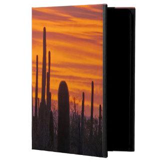 Saguaro, puesta del sol, parque nacional de
