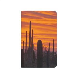 Saguaro, puesta del sol, parque nacional de cuaderno