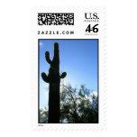 Saguaro Sky Postage Stamps