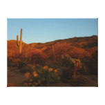 Saguaro Sunset I Arizona Desert Landscape Canvas Print