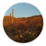 Saguaro Sunset I Arizona Desert Landscape Ceramic Knob