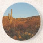 Saguaro Sunset I Arizona Desert Landscape Coaster