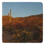Saguaro Sunset I Arizona Desert Landscape Trivet