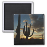 Saguaro Sunset II Arizona Desert Landscape 2 Inch Square Magnet