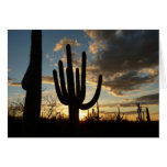 Saguaro Sunset II Arizona Desert Landscape Card