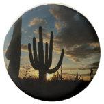 Saguaro Sunset II Arizona Desert Landscape Chocolate Dipped Oreo