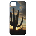 Saguaro Sunset II Arizona Desert Landscape iPhone SE/5/5s Case