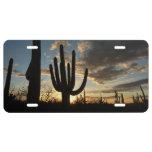 Saguaro Sunset II Arizona Desert Landscape License Plate