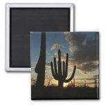 Saguaro Sunset II Arizona Desert Landscape Magnet