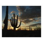 Saguaro Sunset II Arizona Desert Landscape Photo Print