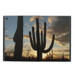 Saguaro Sunset II Arizona Desert Landscape Powis iPad Air 2 Case