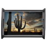 Saguaro Sunset II Arizona Desert Landscape Serving Platters