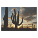 Saguaro Sunset II Arizona Desert Landscape Tissue Paper