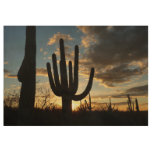 Saguaro Sunset II Arizona Desert Landscape Wood Poster