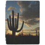 Saguaro Sunset II Arizona Landscape iPad Cover