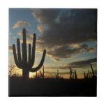 Saguaro Sunset II Arizona Landscape Small Square Tile