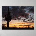 Saguaro Sunset III Arizona Landscape Poster
