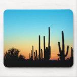 Saguaro Sunset Mousepads