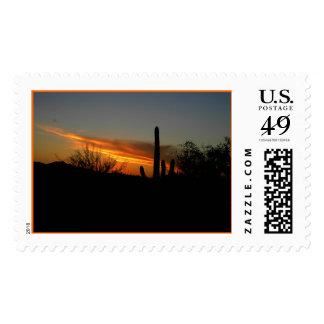 Saguaro Sunset Postage Stamp