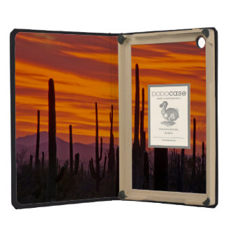 Saguaro, sunset, Saguaro National Park iPad Mini Retina Cases