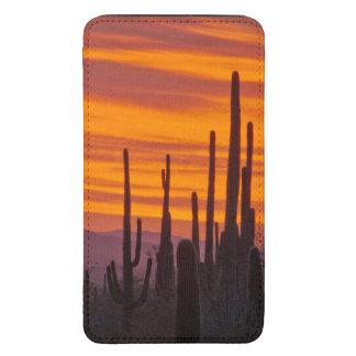 Saguaro, sunset, Saguaro National Park Galaxy S5 Pouch